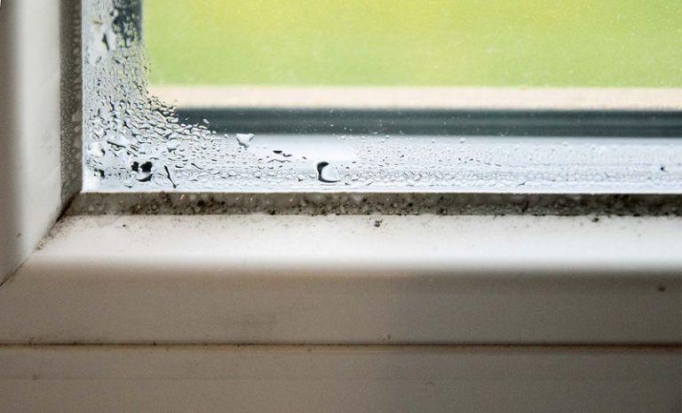 Plíseň na oknech